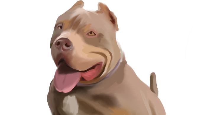 Eu vou fazer uma pintura digital realista  Entonz Freelancer